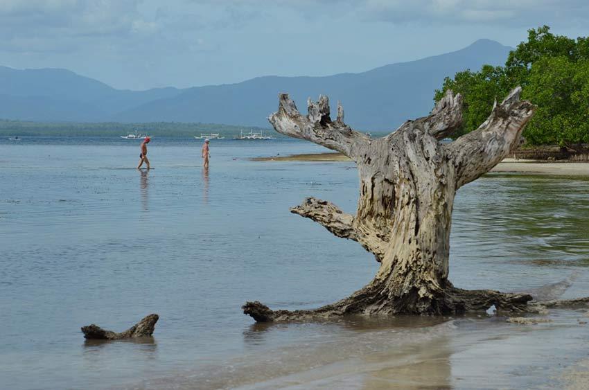 Необитаемый пляж в Пуэрто Принцессе: остров доктора Моро