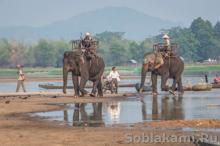 Провинция Даклак во Вьетнаме: как организовать самостоятельное путешествие